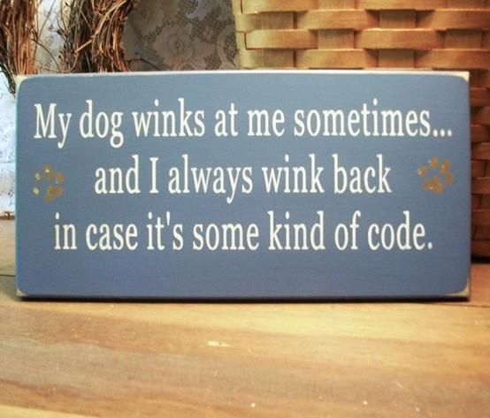 I did that when we had our dog. :)