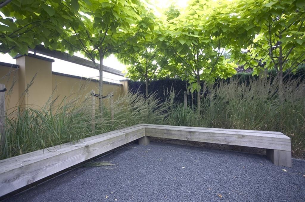 Stadstuin bomen om inkijk te vermijden strakke tuin met water