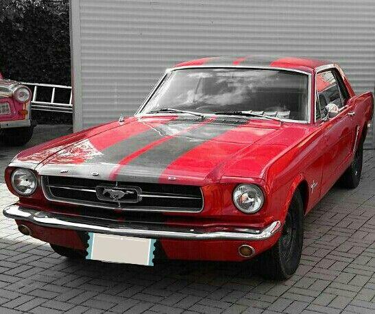 Mustang in Berlin