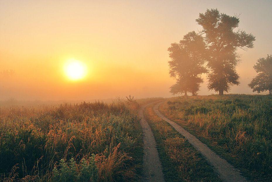 Дорога домой картинки красивые, открытки песни