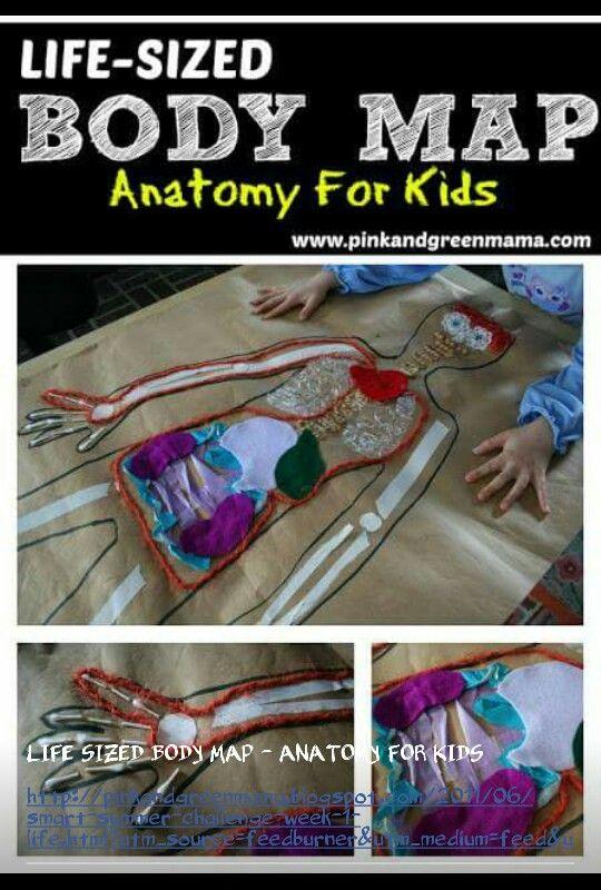 Anatomyyyy