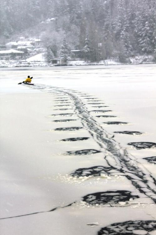 mysleepykisser-with-feelings-hid: Ice Kayaking…