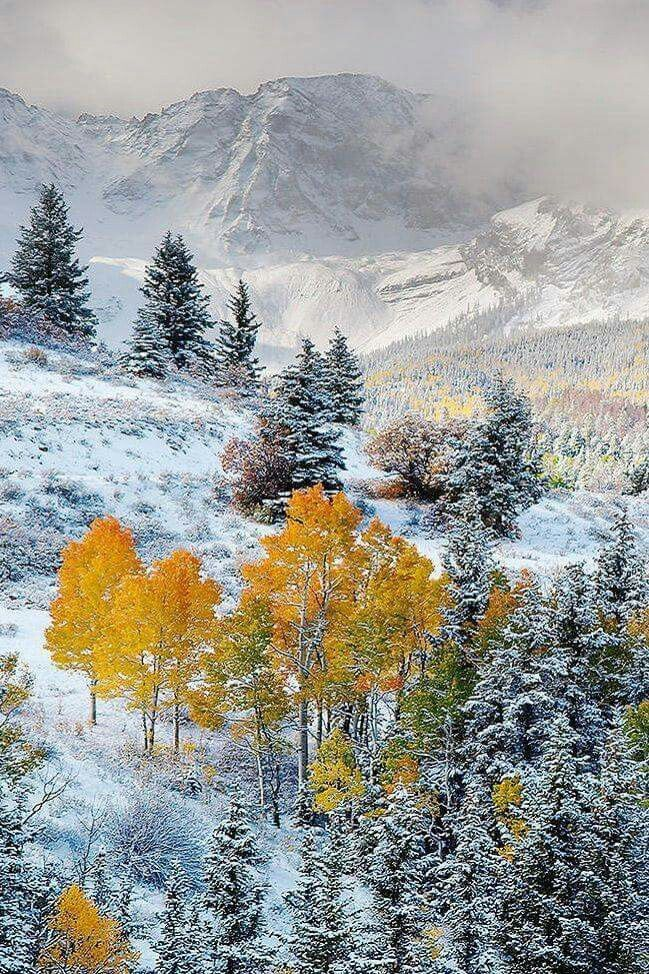 Winter in the Dallas Divide, Colorado