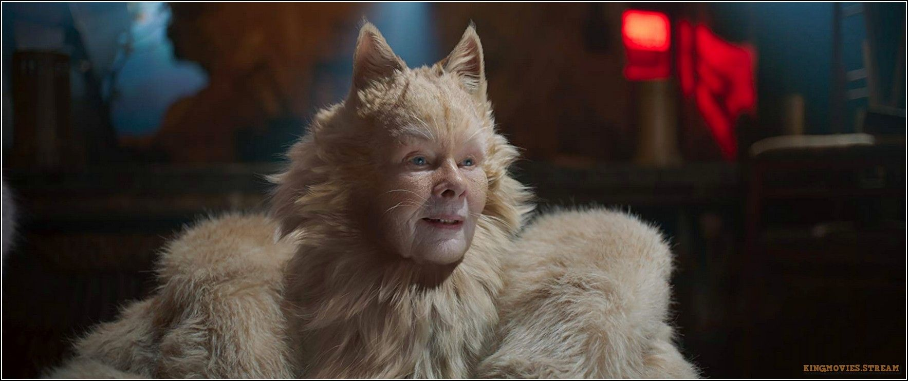 Pin On Watch Cats 2019 Online For Free Hd Movie