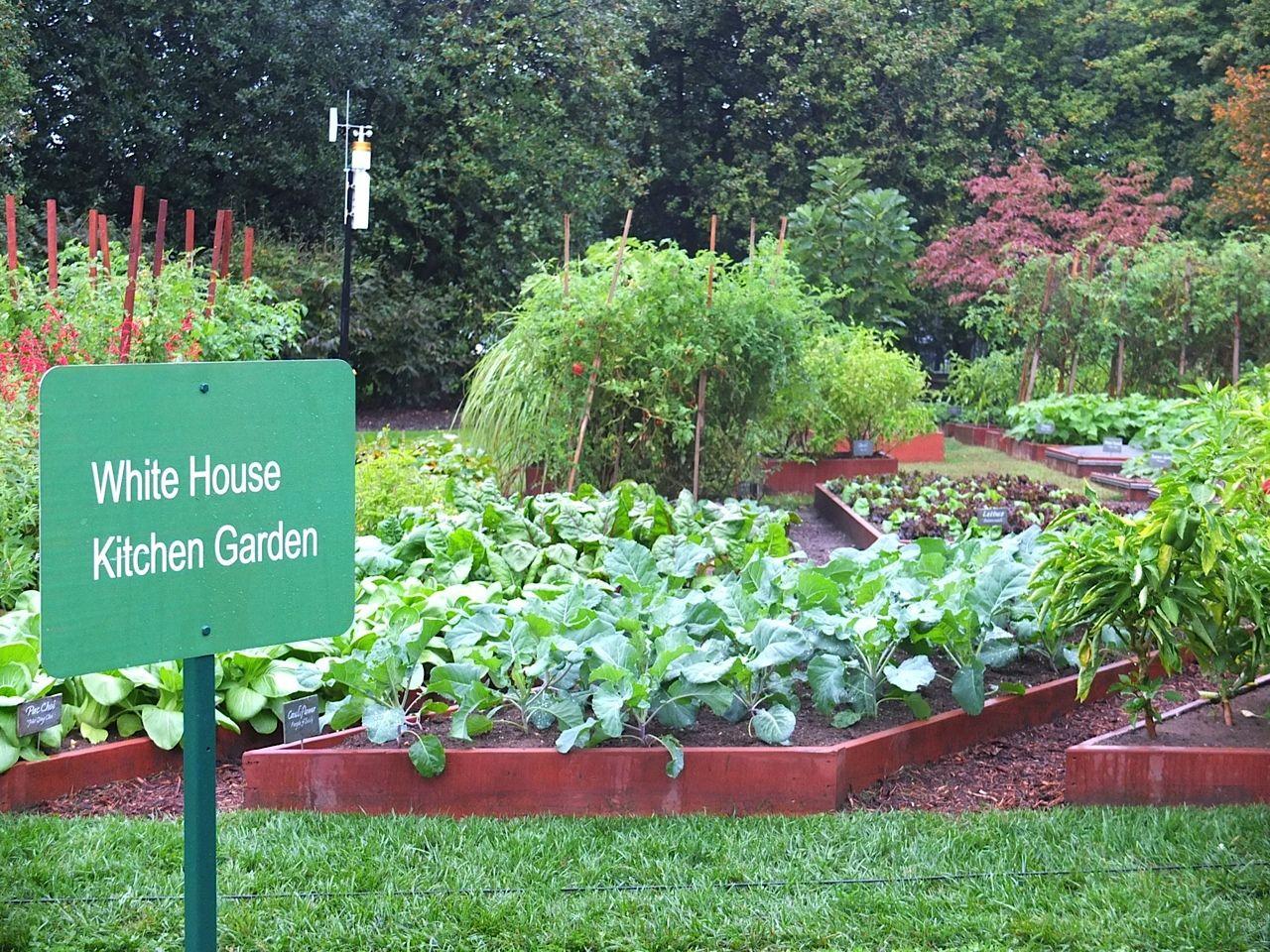 White House Kitchen Garden | McKelvey-6-White-House-Kitchen-Garden ...