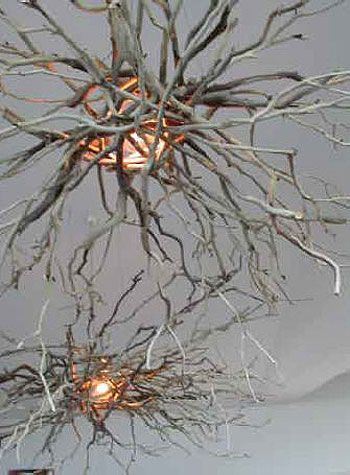30 Creative DIY Ideas For Rustic Tree Branch Chandeliers | Branch ...