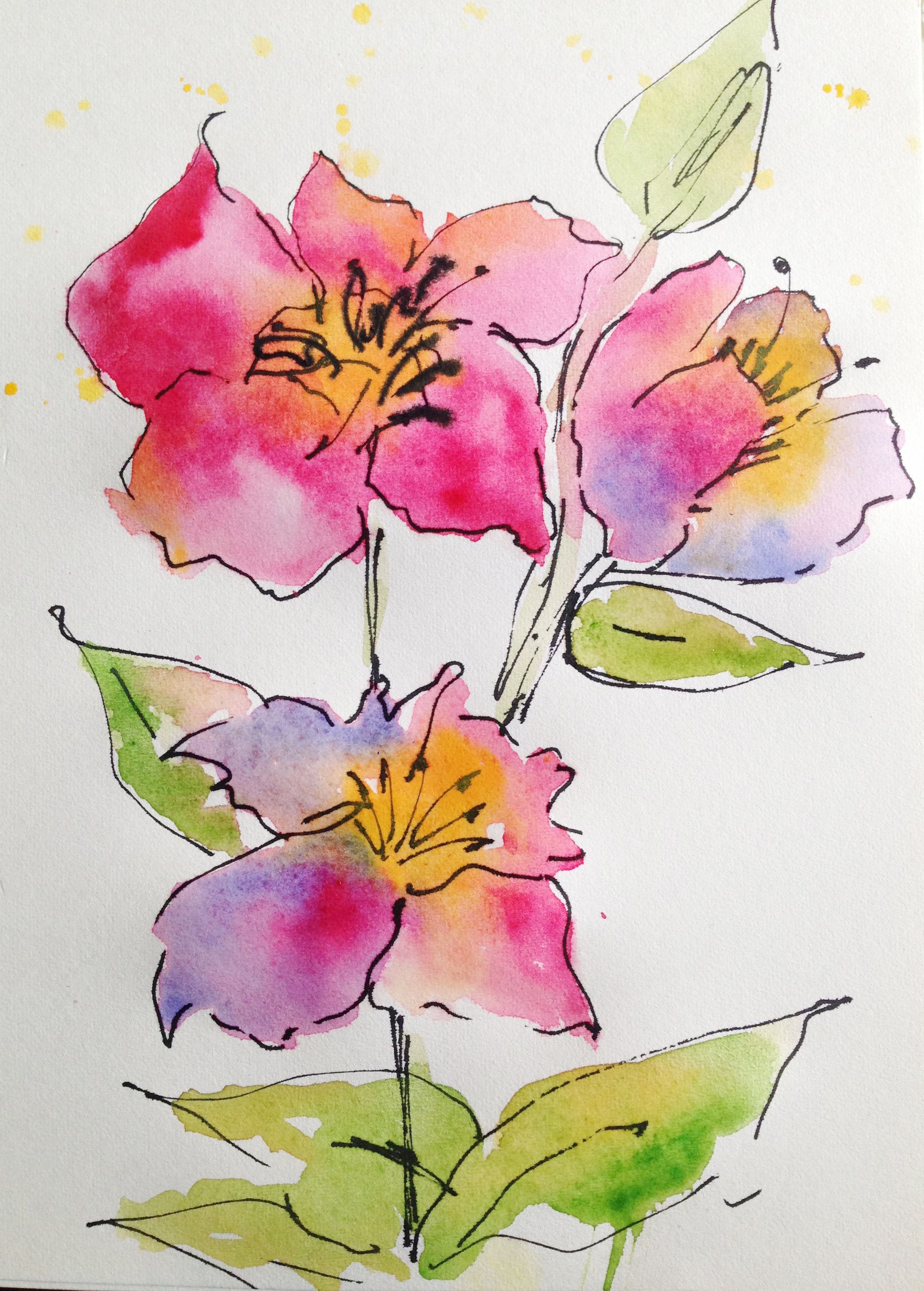 Wild Rose Flower Drawing Images Floral Watercolor Flower Drawing