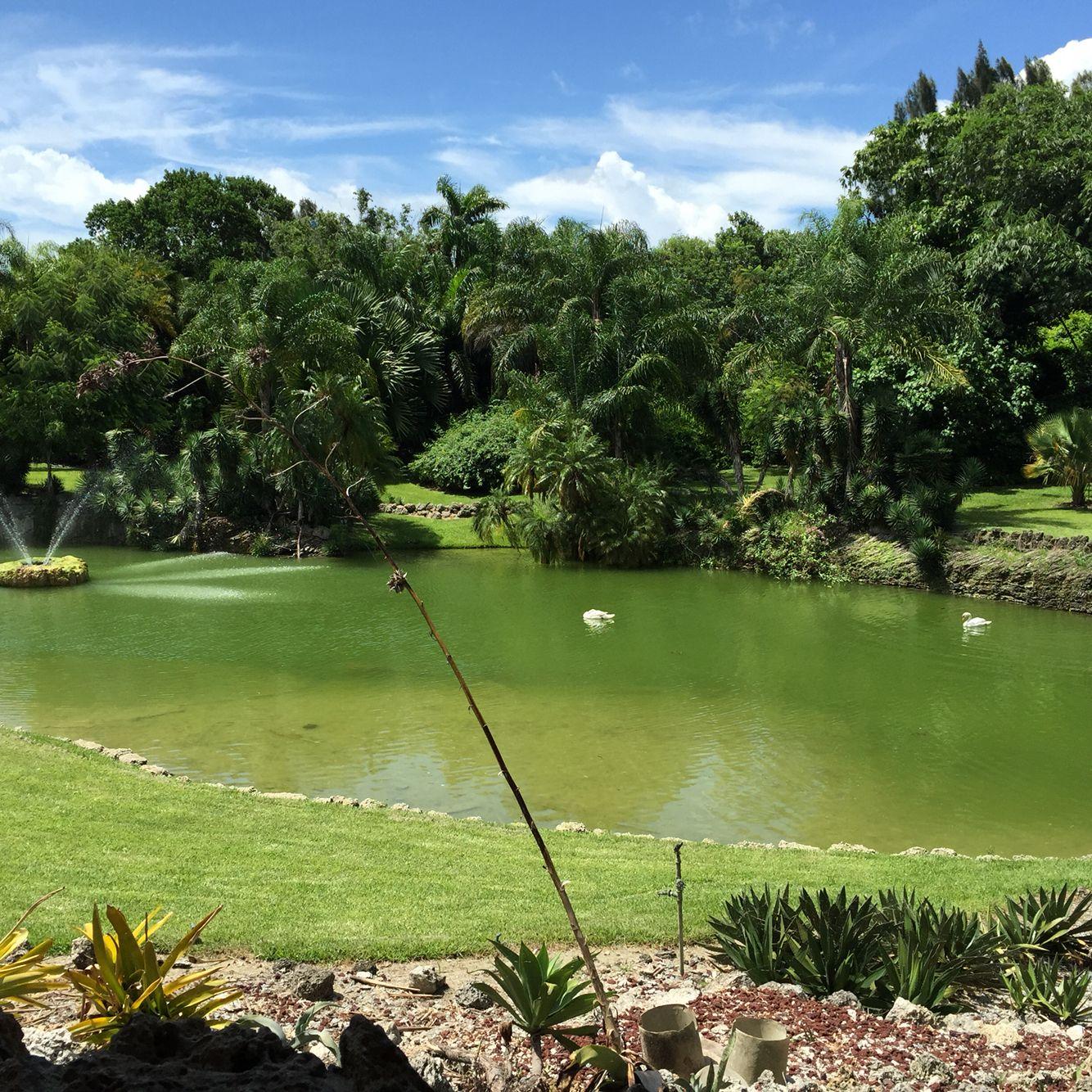 Pinecrest garden miami fl wedding venue Botanical