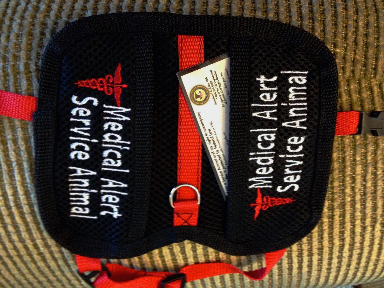 Small/ExSmall Service Dog Vest. 2 pockets, Custom