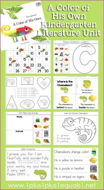 A Color of His Own Kindergarten Literature Unit Printables ...