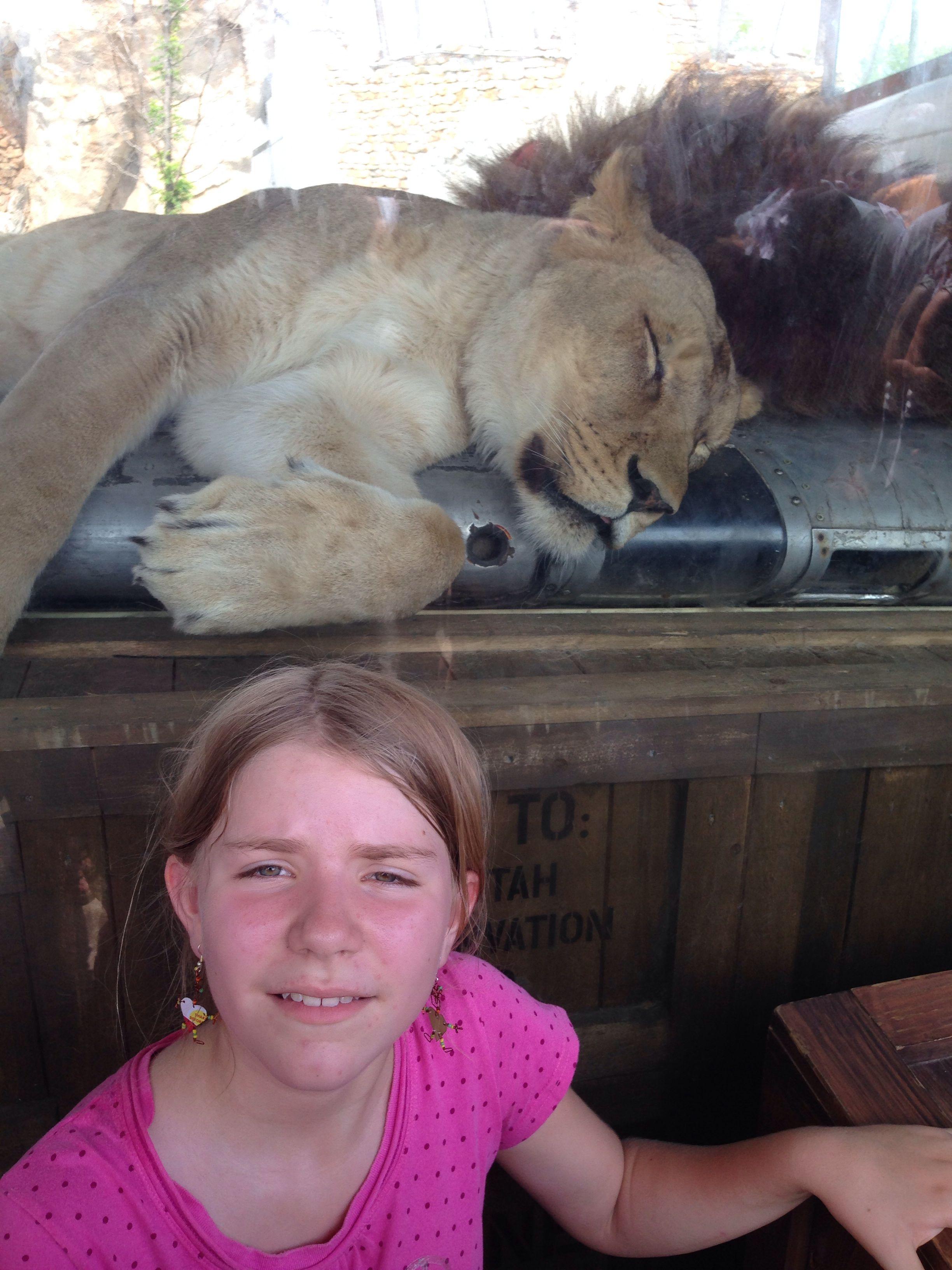 Columbus Zoo June 2014