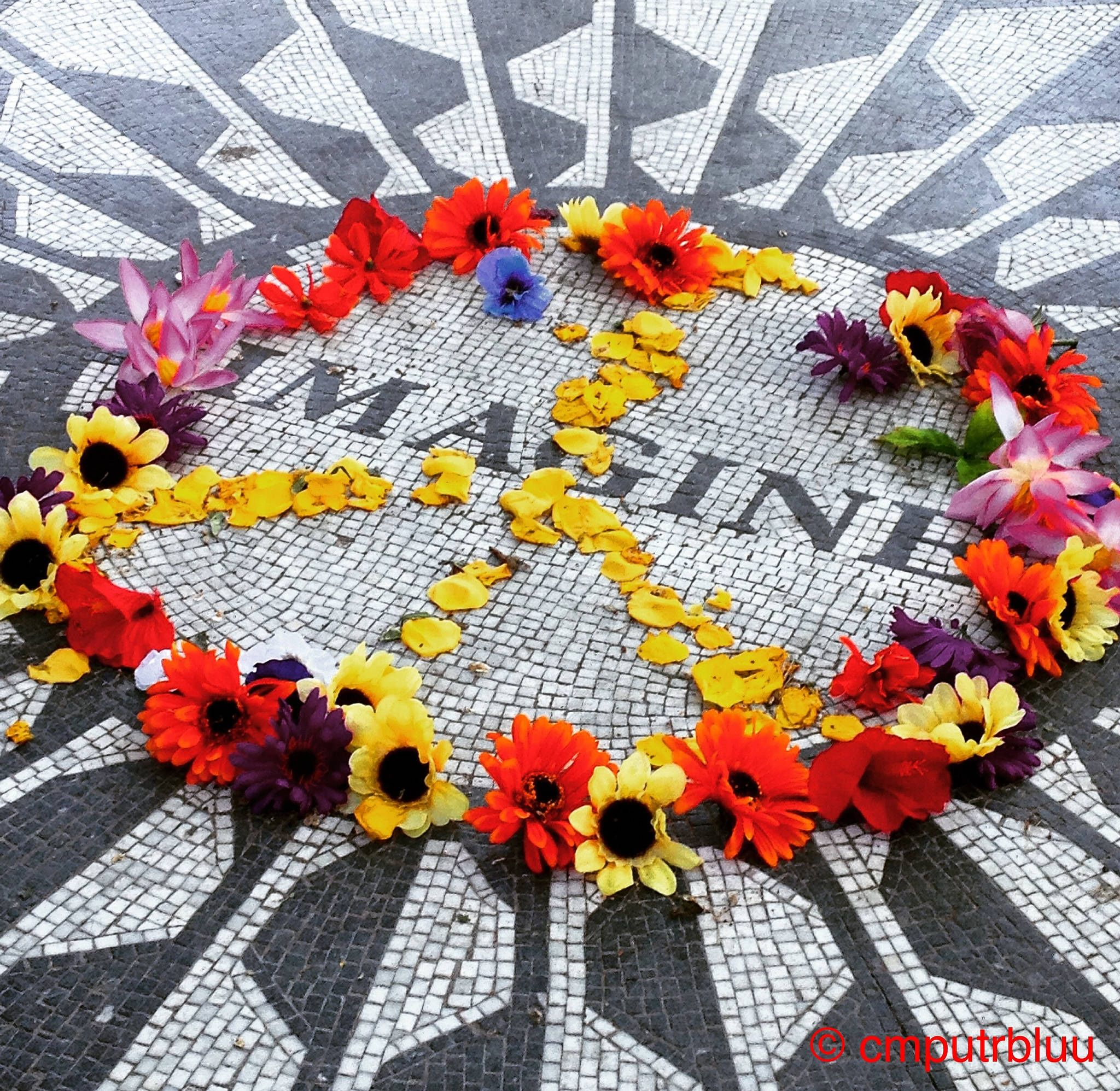 You May Say I'm a Dreamer | Strawberry Fields / Central Park |