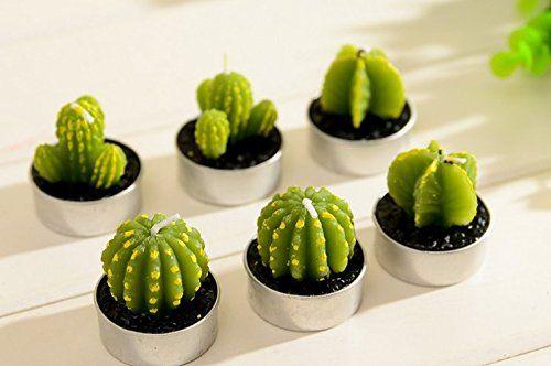 6-piece Mini Lovely Green Meat Plant Cactus Romantic Candle Mestore http://www.amazon.com/dp/B00QMITWY4/ref=cm_sw_r_pi_dp_M8gMvb0J82XMD