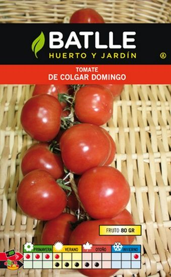 Semillas tomate de colgar