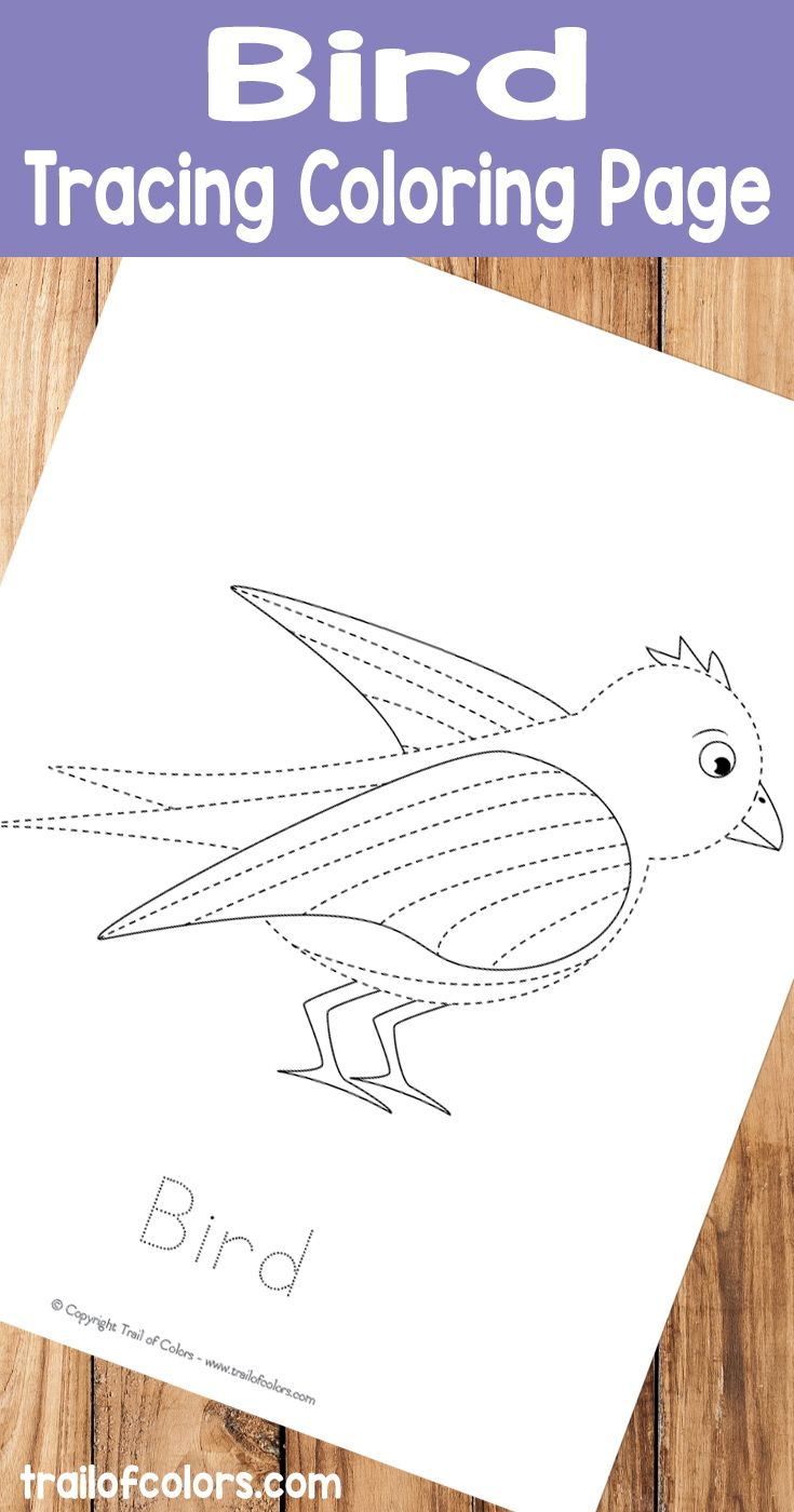 Printable Bird Tracing Coloring Page | drawing | Pinterest ...