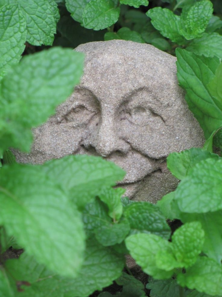 One Of The Many Faces In The Garden Stone Faces Pinterest Jpg 736x981 Stone  Faces Garden