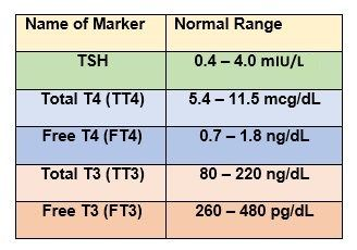 Tsh levels chart thyroid pinterest thyroid thyroid levels and