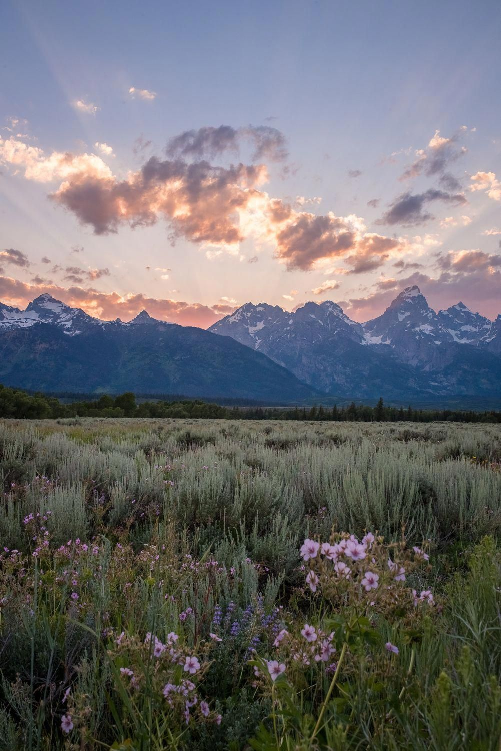 468304061256045614 In 2020 Landscape Photography Nature Nature Photography Landscape Photography