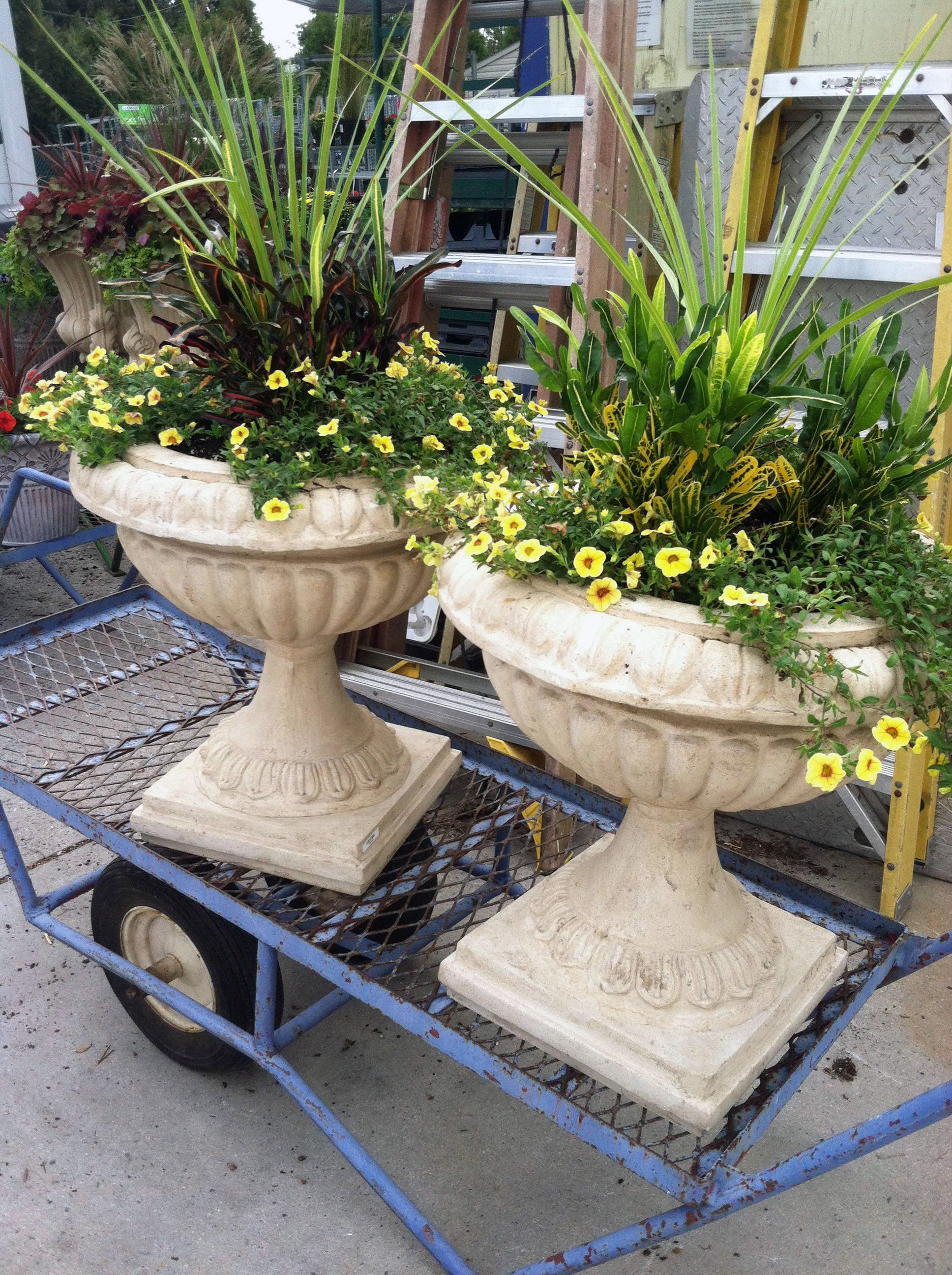 Visit Your Local Garden Store Garden Store Garden Services