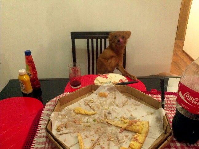 Opps... esqueci que ainda tinha você para comer...