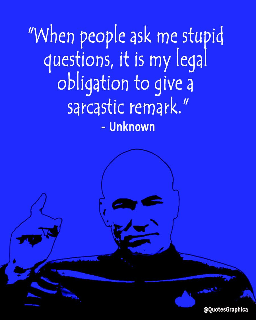 Funny Quote From Someone Asking Stupid Question Funny Quotes Funny Quotes Sarcasm Witty Comebacks