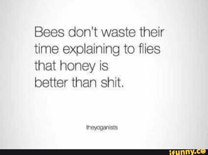 Bees don't waste their time explaining to flies that honey is better than shit. - )