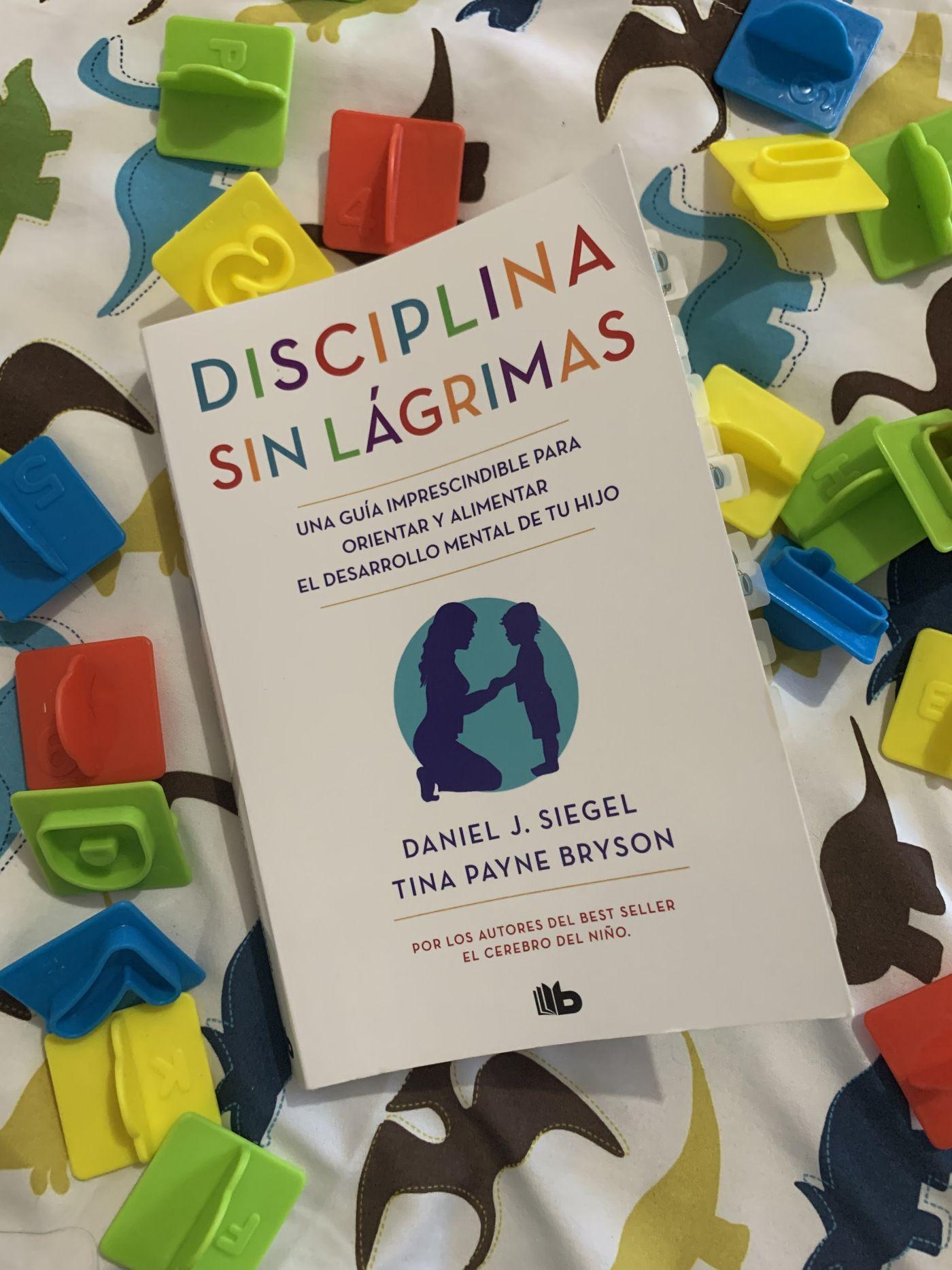 Mamátambiénlee Disciplina Sin Lágrimas Masha B Blog Por María Moctezuma Disciplina El Cerebro Del Niño Emocional