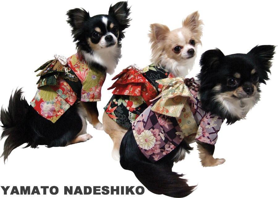 dog Kimono, doggy kimono,Yamato Nadeshiko Purple, Red,  Black