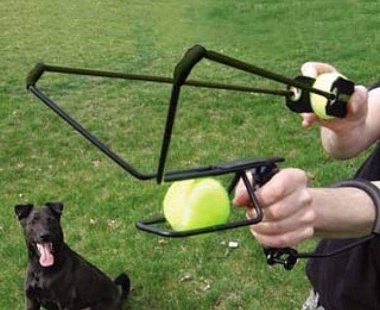 Dog ball slingshot