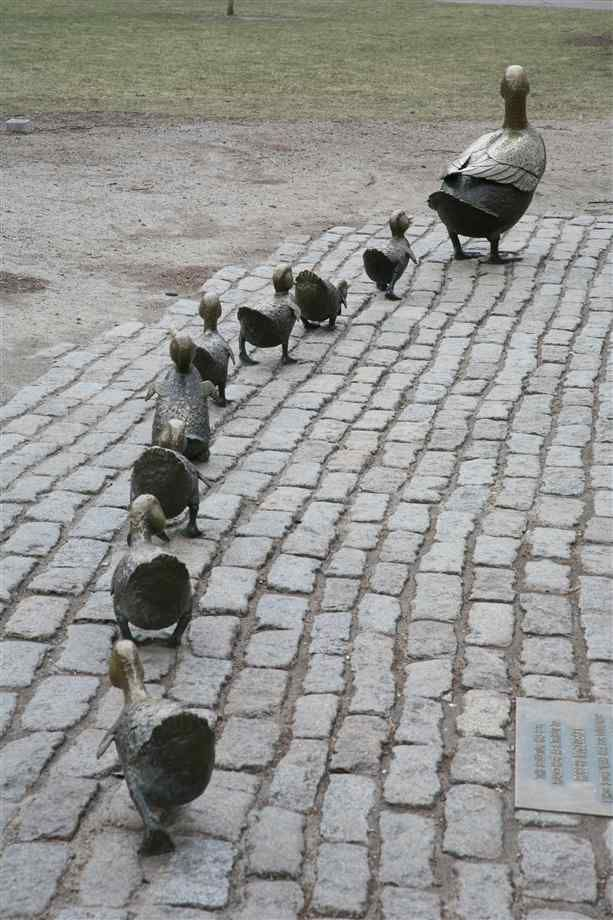 Keeping all my ducks in a row.