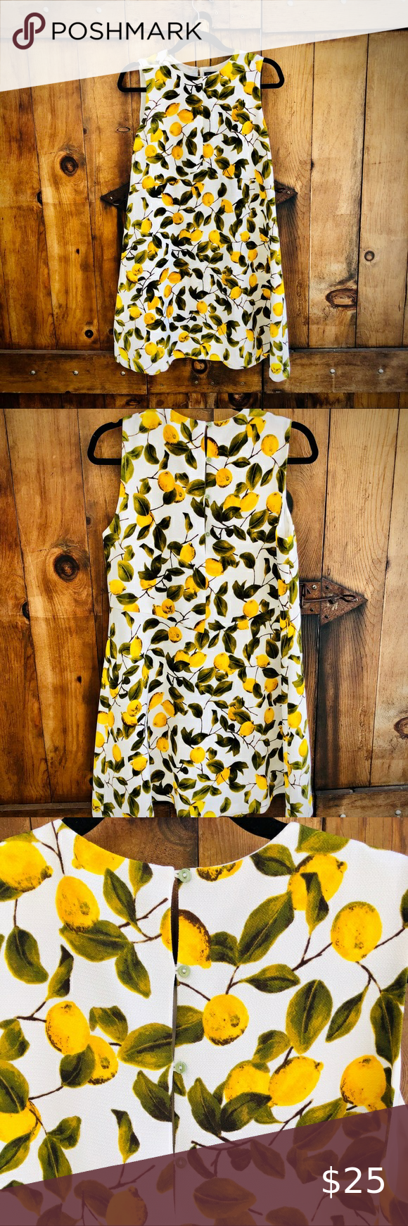 Zara Lemon Printed Dress Lemon Print Dress Lemon Print Zara
