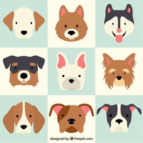Tausende Von Gratis Vektoren Bilder Hd Fotos Und Psd Hundekunst Hund Illustration Illustration Design