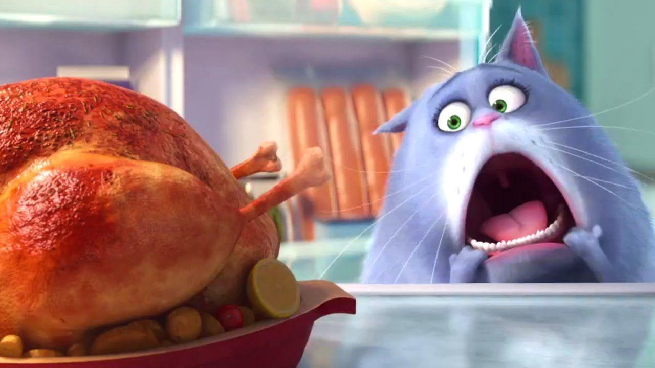 The Secret Life Of Pets Trailer Animation 2015 Pets Movie Secret Life Of Pets Pet Trailer