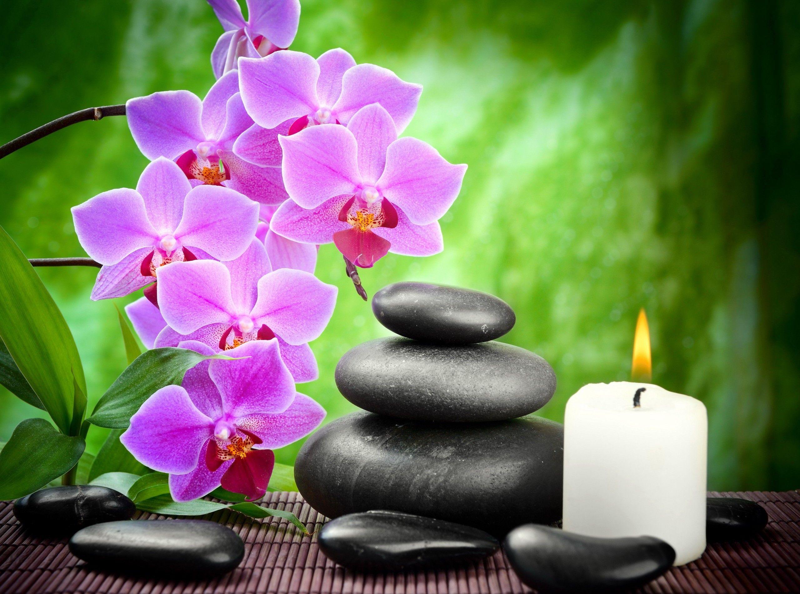 fond d'ecran zen orchidee