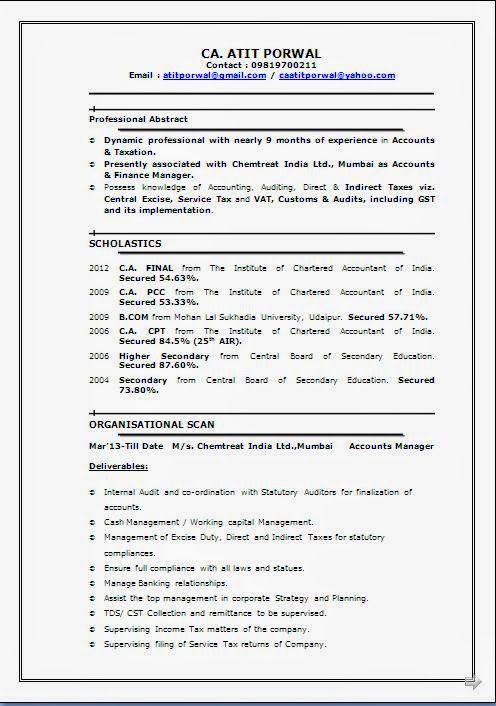 Professional Experience Resume Format Sample Template Example of ...