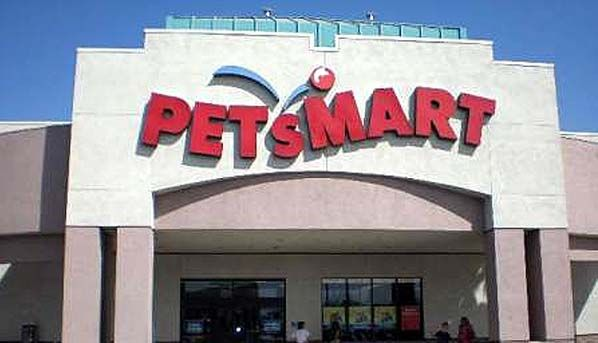 3 Updates Dog Dies In San Mateo Petsmart Groomer S Care Video Petsmart Petsmart Dog Pet Toys