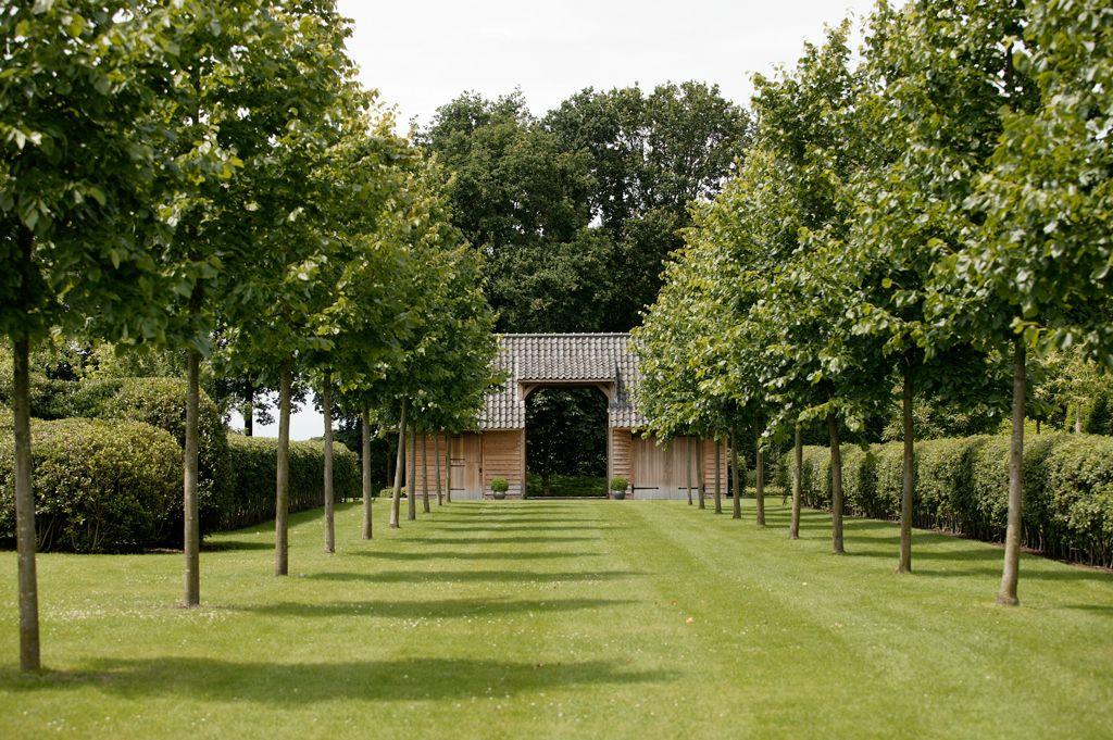 Landelijke tuin met golvende hagen en snoeivormen - Avantgarden