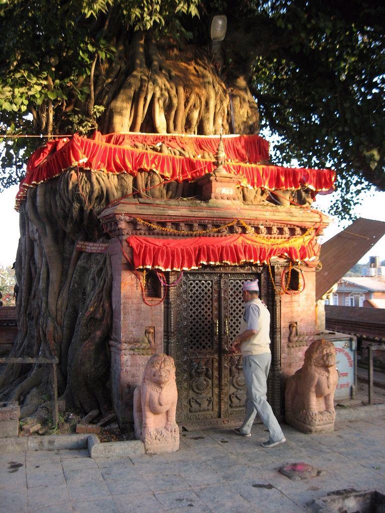 Nepali temple or tree