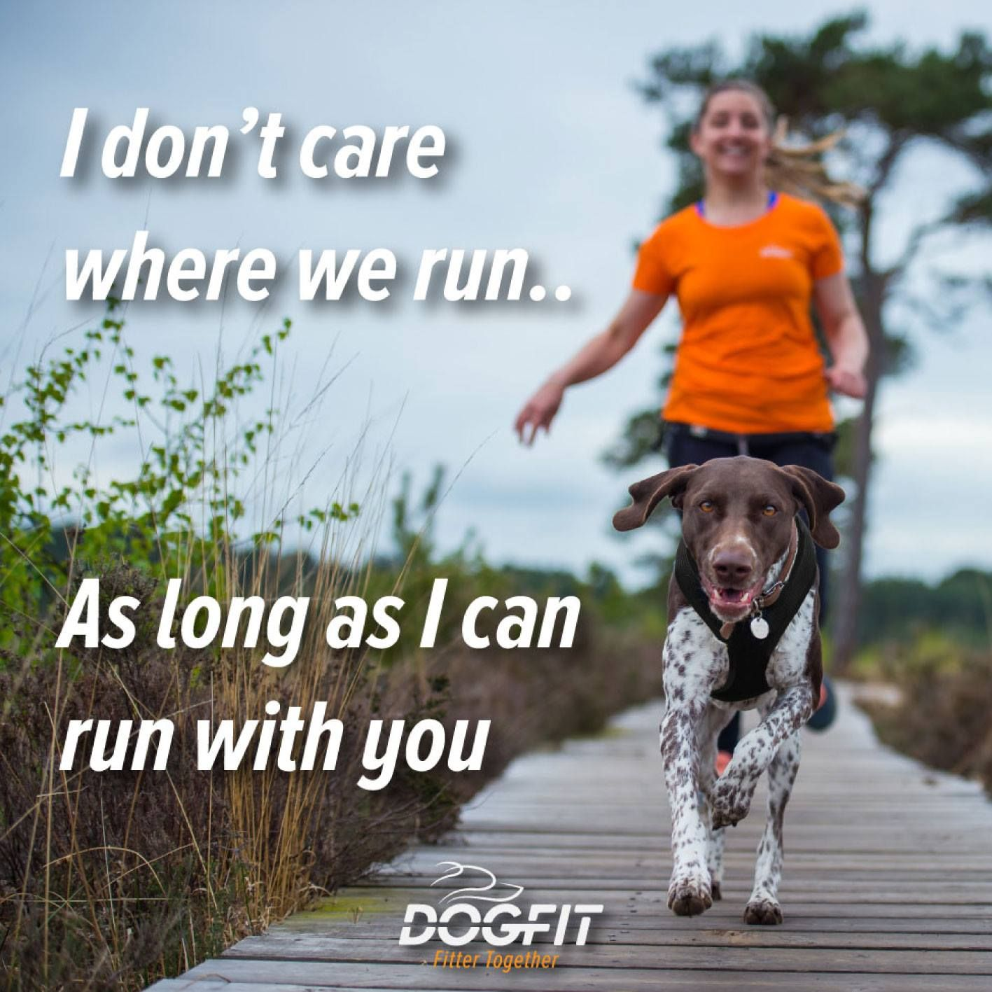 Nothing Beats Running With Your Best Buddy Trail Running Dog