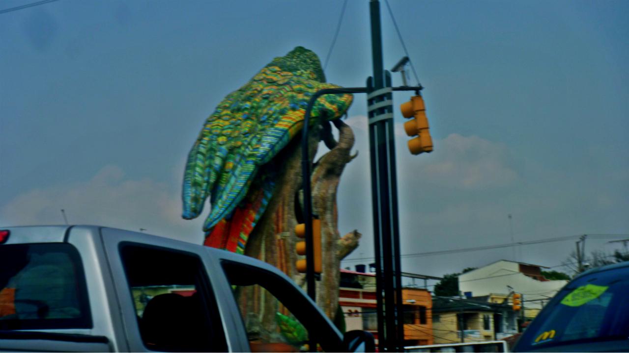 ¡Disfruta del tráfico!