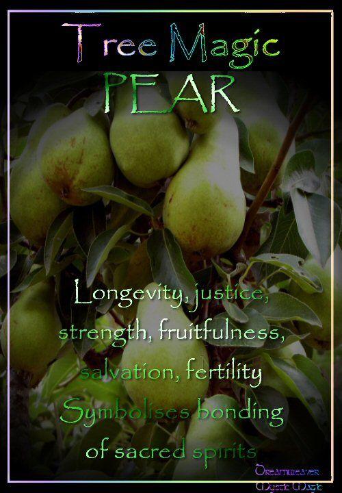 PEAR Longevity, justice, strength, fruitfulness, salvation, fertility Symbolises bonding of sacred spirits