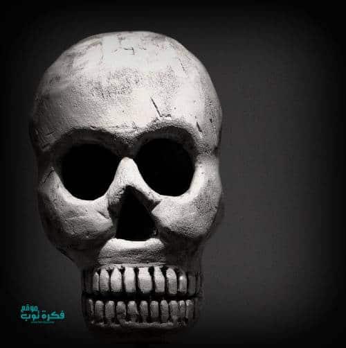 صور جماجم مرعبة جدا 2019 خلفيات جماجم نارية كيوت ملونه Hd 13 Skull Art