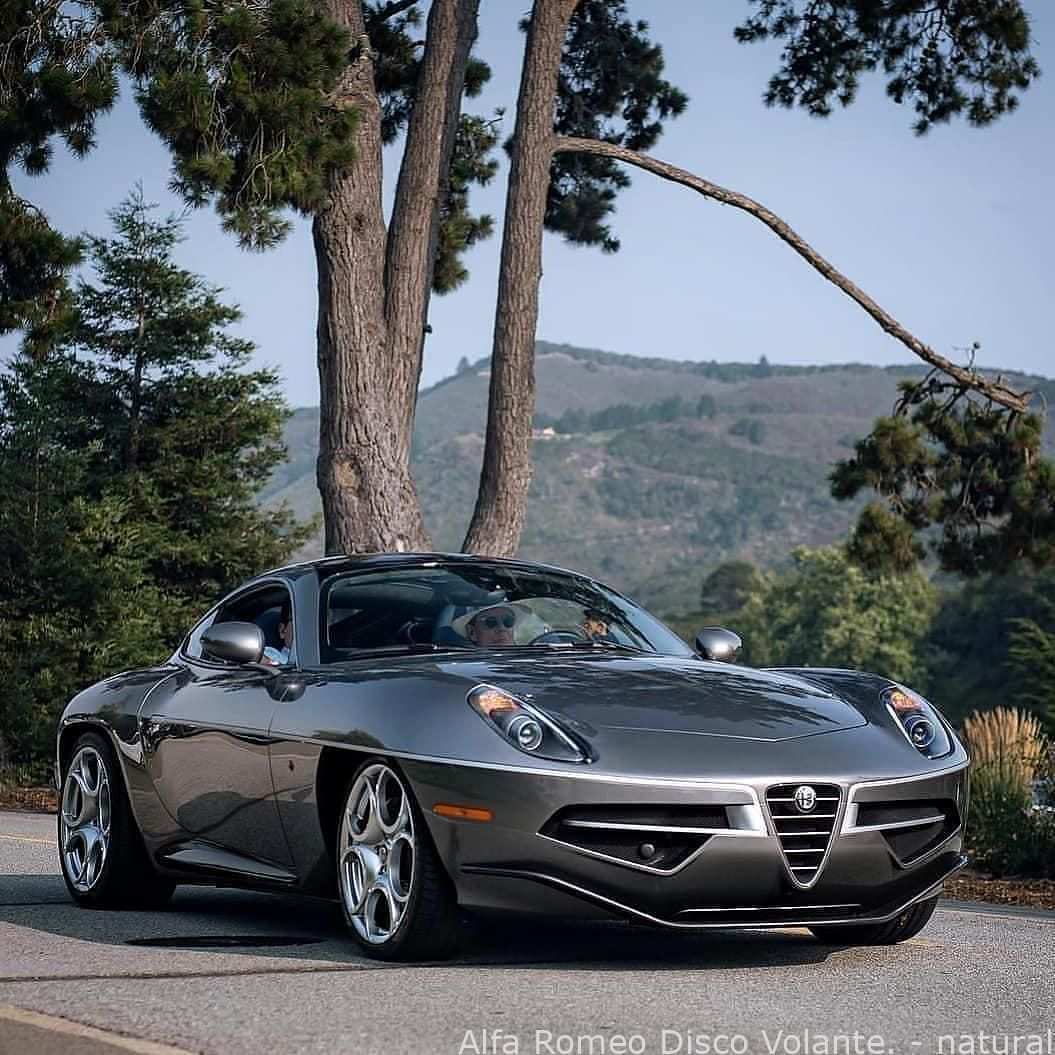 Cars Alfa Romeo Disco Volante Natural Cardiy Carsvehicles Newercars Oldcars Sp Alfa Romeo Buy Classic Cars Classic Cars