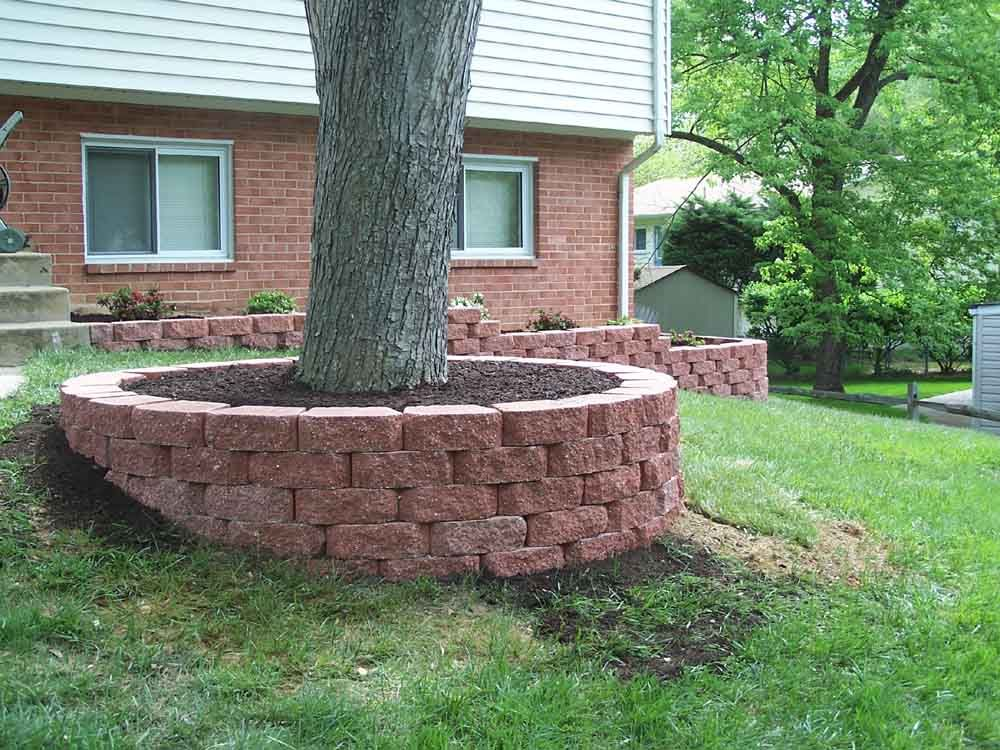 Landscaping around trees professional stone work silver for Professional landscaping ideas
