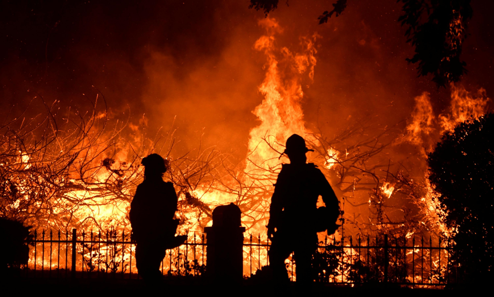 Los Angeles Fires Google Search Firefighter California Wildfires Los Angeles Fire Department