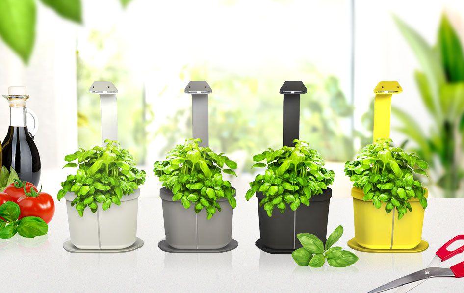Le potager se fait pratique. Au jardin, sur le balcon ou même dans la maison il conquiert tous les espaces. Découvrez toutes les solutions  pour vous rendre le potager facile : poulailler potager, table potager ou le carré potager jardinière.