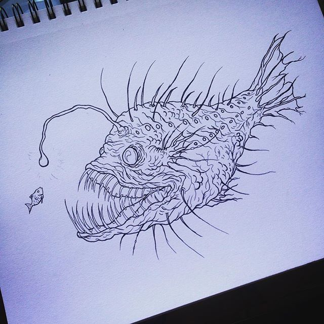 Adam Obrien Adam Obrien Instagram Photos And Videos Fish Drawings Angler Fish Illustration Skeleton Drawings