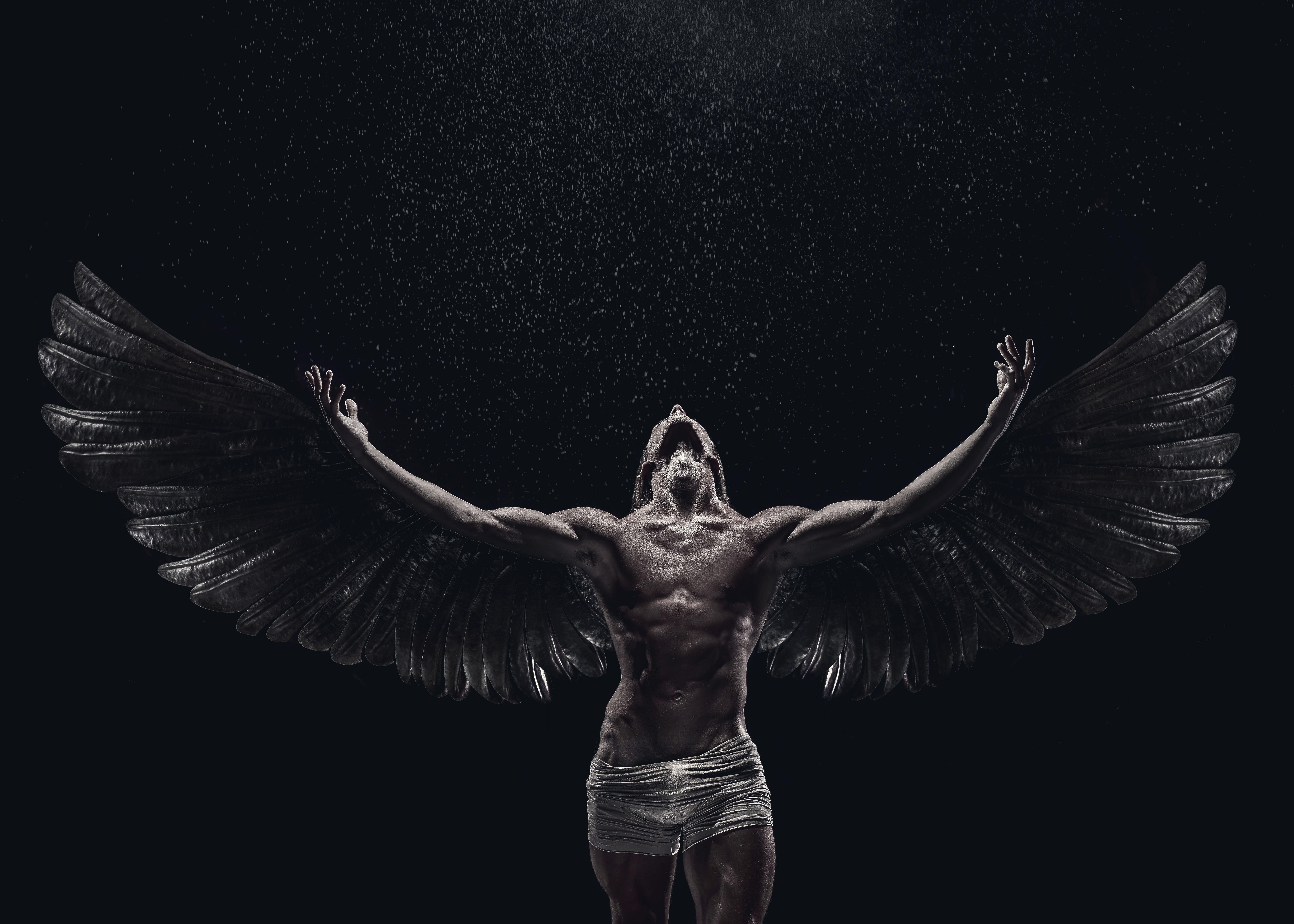 Echa un vistazo a este proyecto behance fallen angel