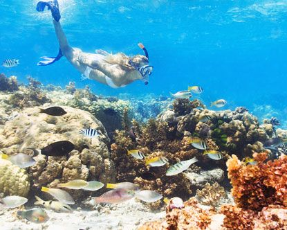 64b84dbee6d Snorkeling in Punta Cana: CHECKED! | bing | Belize snorkeling ...