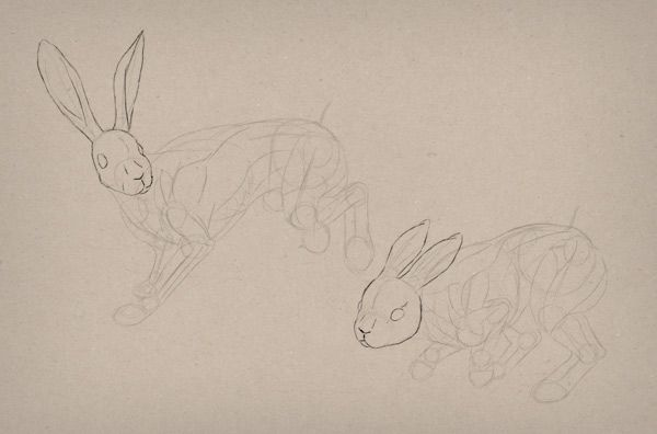 What You'll Be CreatingHares and rabbits are often confused with each other because of their hopping movement and long ears. To draw them accurately, we need to understand what makes them so...